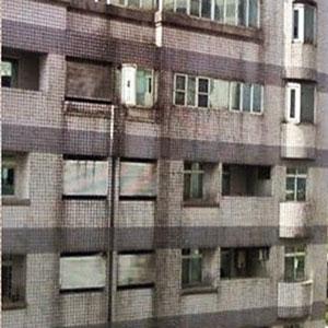 常見的外牆建材
